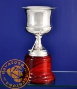 Copa de orfebrería en baño de plata - Golf