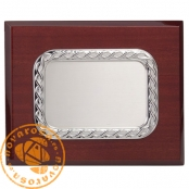 Silver jewelry plate