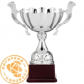 Silver classic cup with handles