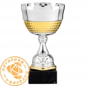 Silver and golden economic cup