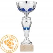 Silver economic cup