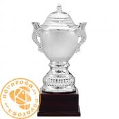 Trofeo de cerámica plateada
