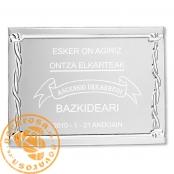 Placa de aluminio plateada